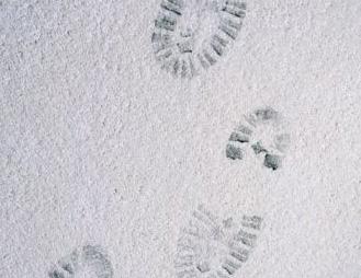 Pristine Cleaning | Husband Leave Tracks Again?